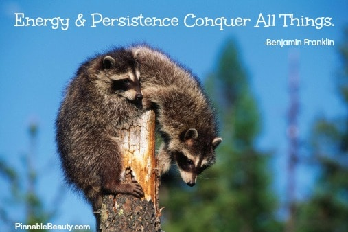 Benjamin Franklin Quote – Persistence