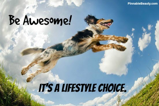 Be Awesome! It's A Lifestyle Choice